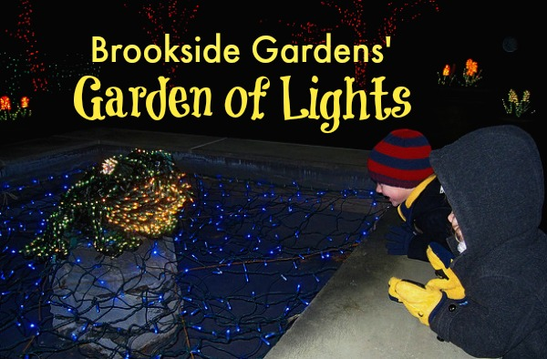 brookside-garden-of-lights