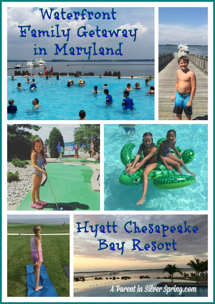 hyatt chesapeake bay pinterest