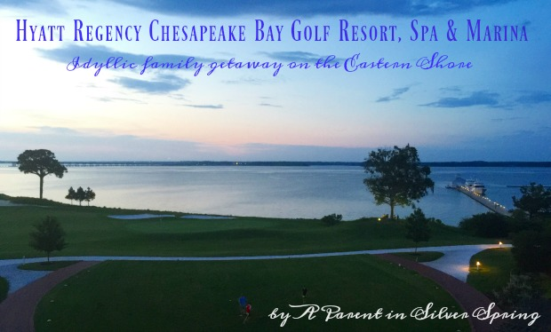 hyatt regeny chesapeake bay