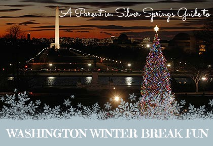 washington-dc-winter-with-kids