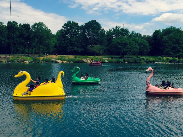 washingtonian-paddleboats